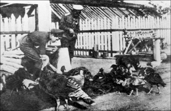 Tsar Nicholas II and Tsarevich Alexei feeding turkeys in Tobolsk